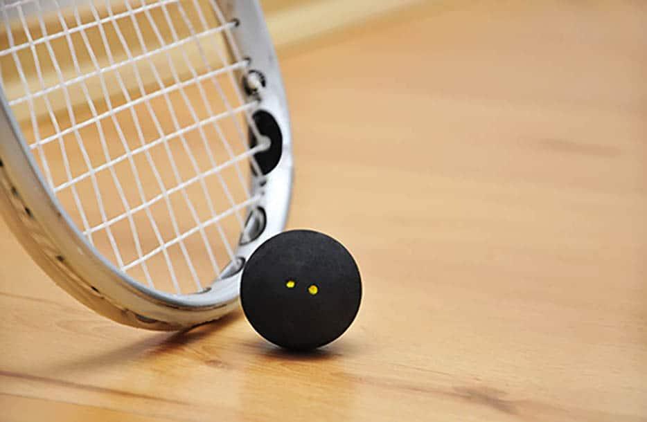 Elite Junior Squash camp success