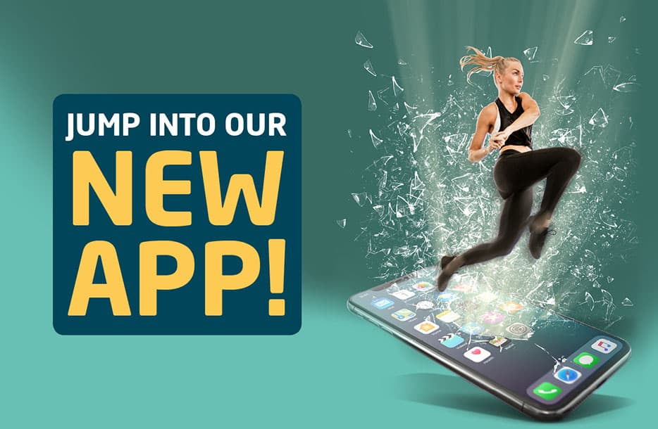 Jump into the new Brio app!