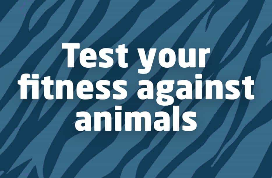 Test your fitness against animals!
