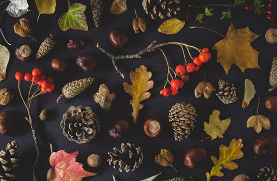 What does your autumn night say about your fitness?